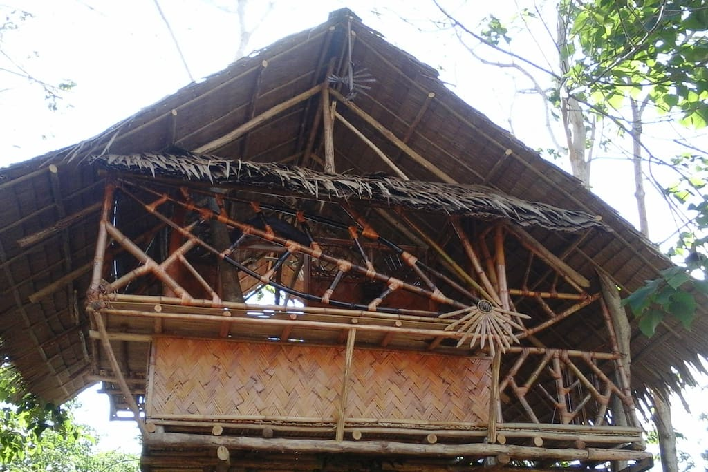 Another view of bamboo tree house