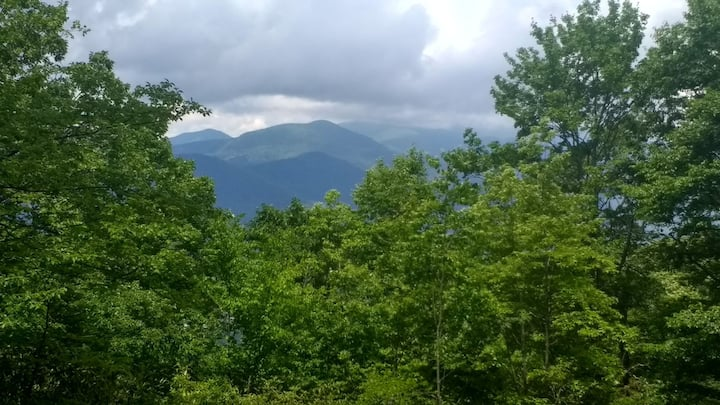 Wildflower Cove - Mtn. Views, 20 min. to Asheville