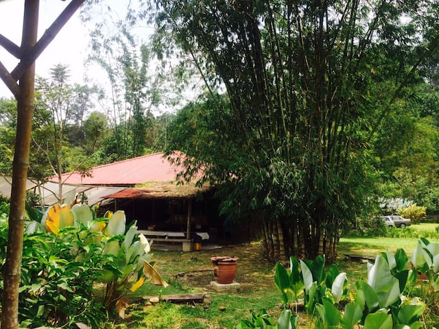 Genting Highland Organic Retreat - Bentong - บ้าน