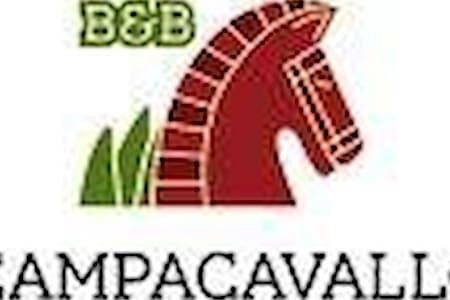 Arancio - Campacavallo b&b low cost - Tricase