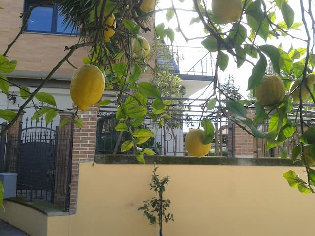 Cottage in città - Salerno - Hus
