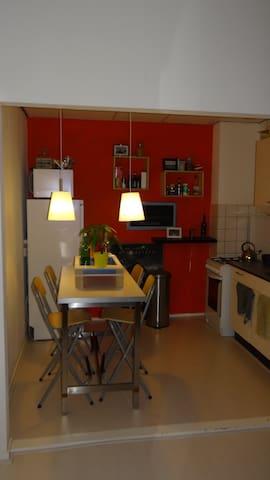 Well locatad apartment Beach/Centre - Den Haag - Appartement