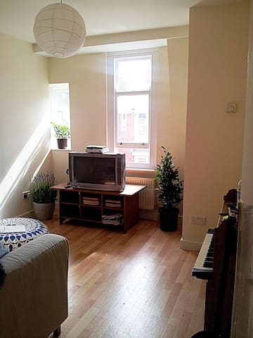 Olympic Rental Dalston - Must see!! - Essex