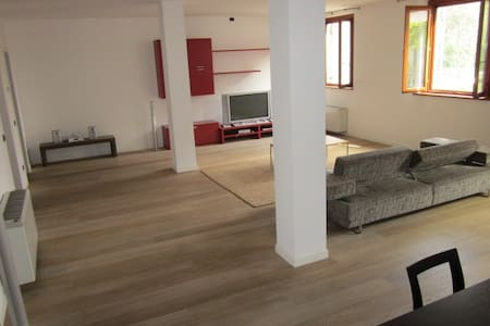 The Top 20 Lofts for Rent in Rogorotto - Airbnb
