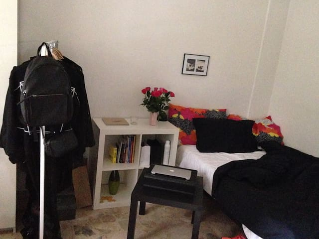 Comfy and bright room with garden - Rome - Huis