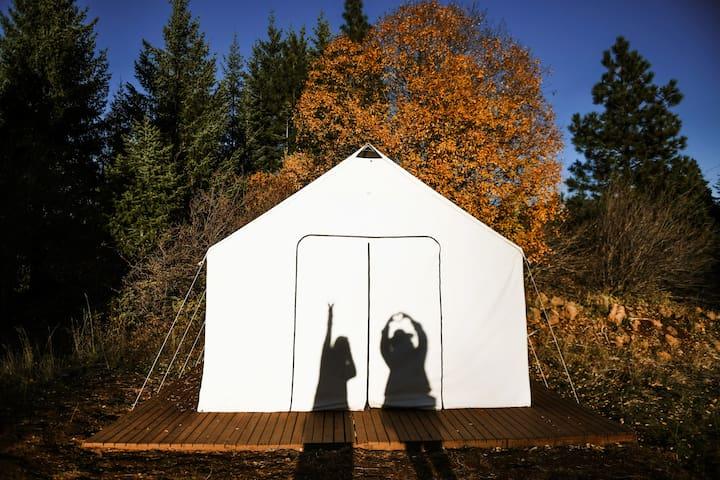 Glamping at Cave Creek Farm - Mt. Adams Tent