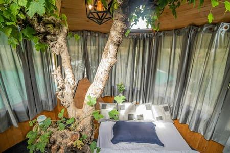 Raabta treehouse by The hidden burrow