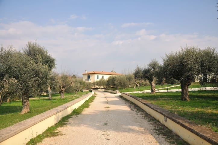 'A Casa di Zia' just outside Rome! - Zagarolo - House