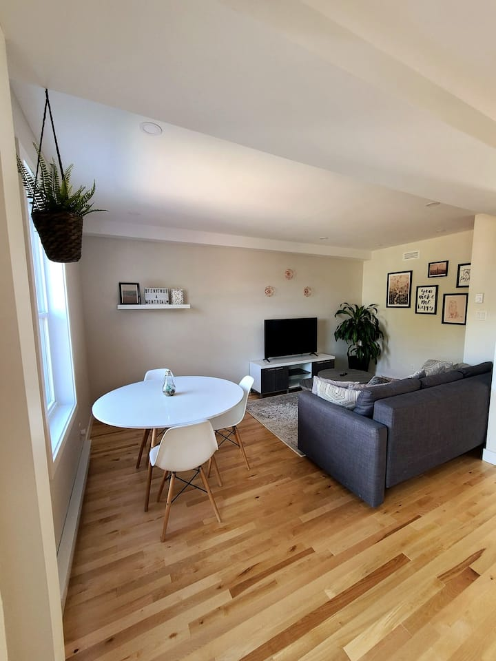 Beautiful apartment in the heart of East Montreal