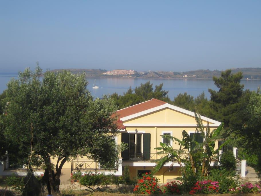 Seapine studio appartamenti in affitto a argostolion grecia for Appartamenti in affitto a bressanone e dintorni