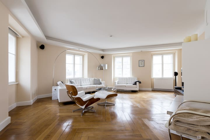 Wonderful apartment in the heart of Vienna - Vienna