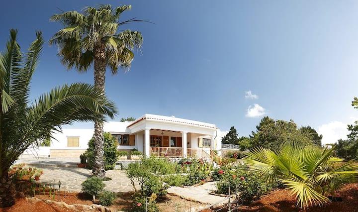 Villa with private pool in Ibiza