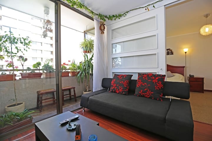 Furnished Apart Forestal Park 11 - Recoleta - Apartment