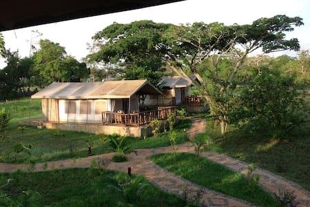 Affascinante Lodge in Shimba Hills - Mombasa - Stuga