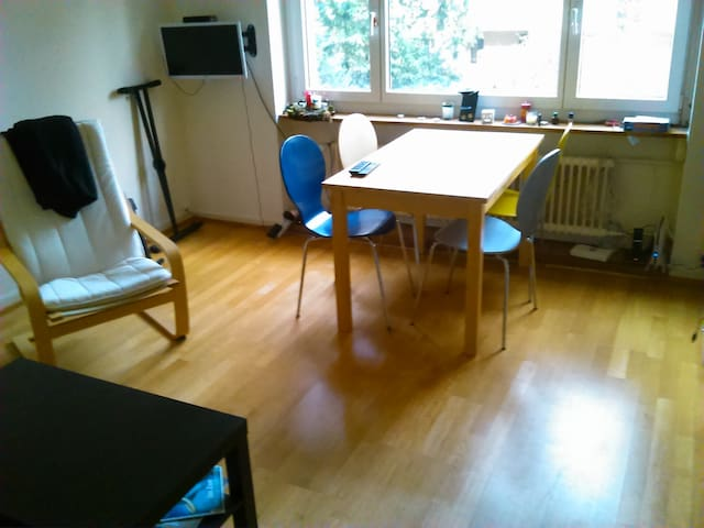 Living Room on central location - Basel - Wohnung