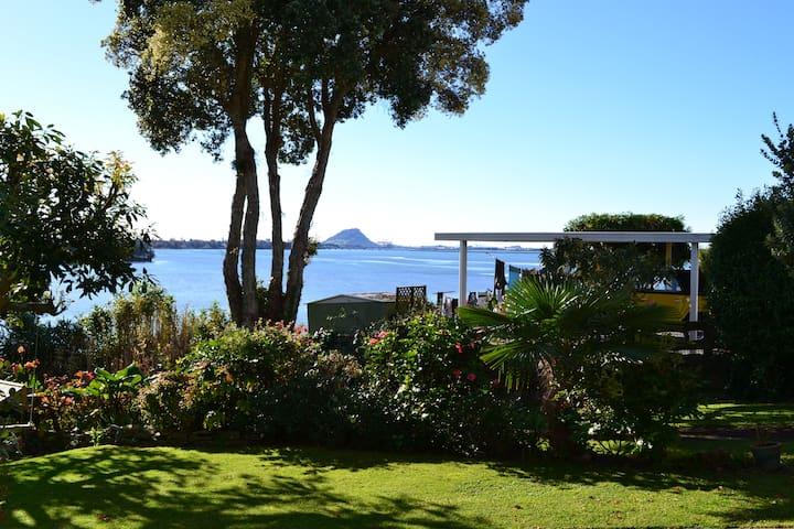 Maungatapu Hideaway  - elevated,  waterfront