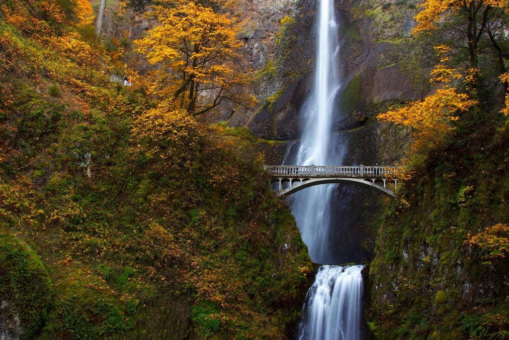 Multnomah Fall 20 mins away.