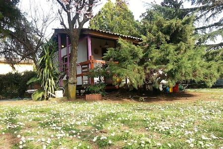 """""""Il cottage di Mariuccio"""" - Monterosi"""