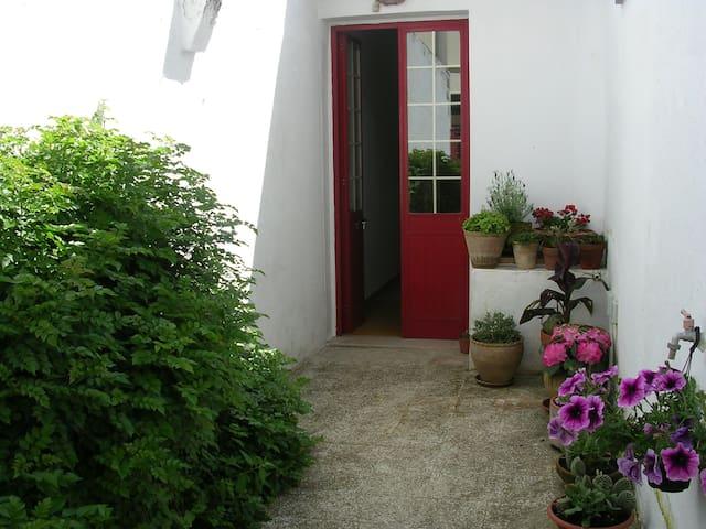 Semi independent villa in Salento - Tricase - House