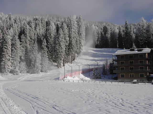 Sulle piste da sci !  On ski slopes !