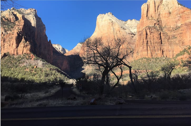 Zion National Park - 45 minutes away