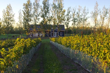 A Vineyard Cottage at Broken Stone Winery - Hillier