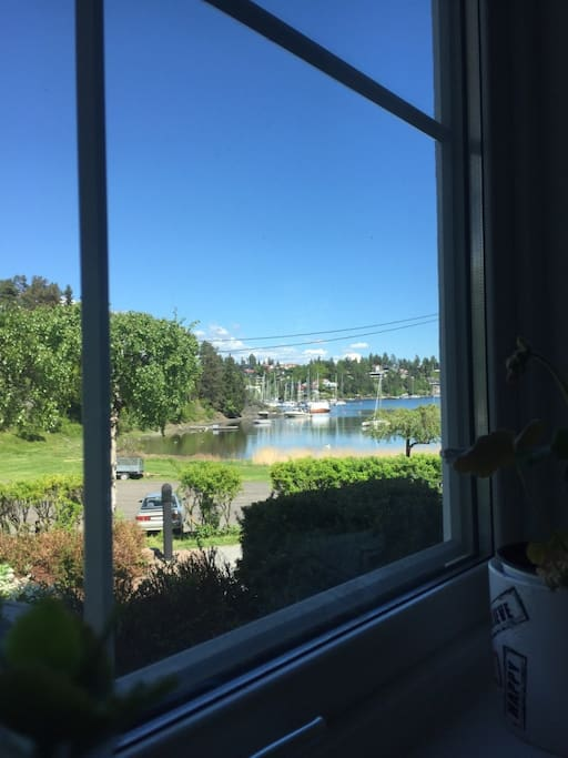 View from livingroom