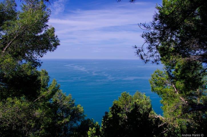 Sea and Mountain near Cinque Terre and Versilia