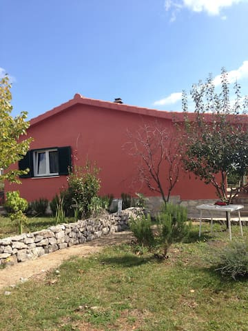 Charming family house - Tijarica - Casa