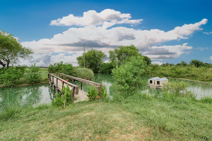 Front pond w/ducks & fish