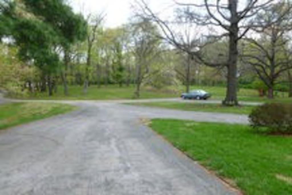 front park area
