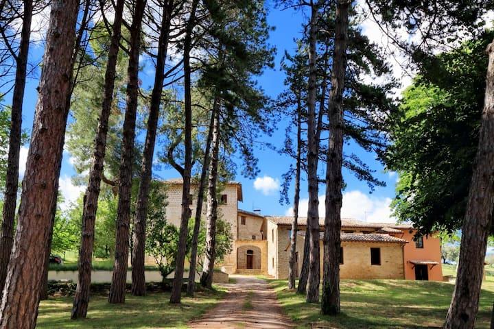 Borgo ai Pini - Villa ai Pini
