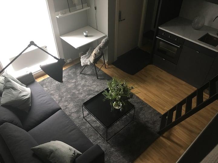 Ett roms på St. Hanshaugen