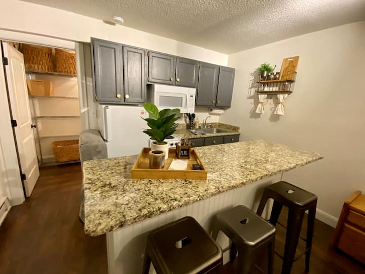 Ski-in/out Suite retreat!  kitchen, WiFI, smart TV