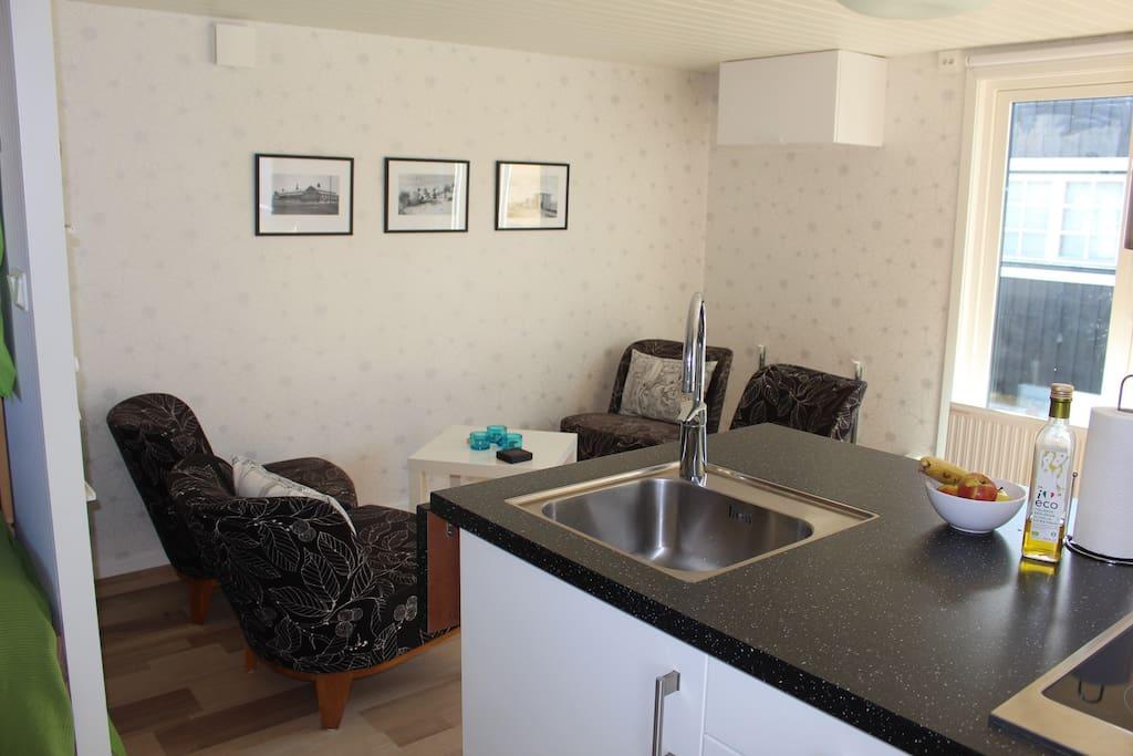 Vardagsrum med köksdel (Living room with kitchen part)