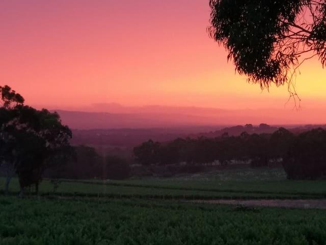 Fabulous sunset!