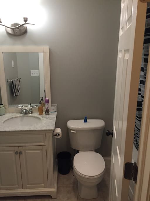 Guest private bathroom