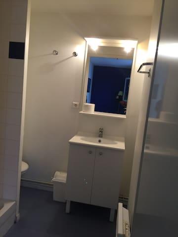 Salle de bain, meuble et miroirs, sèche cheveux, wc.