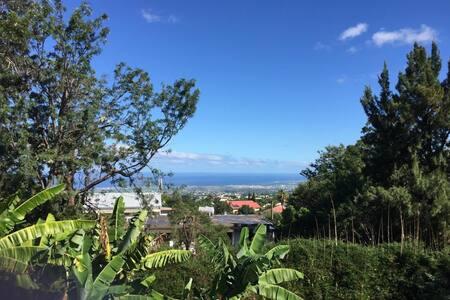 Grand Studio, indépendant , calme, jardin tropical