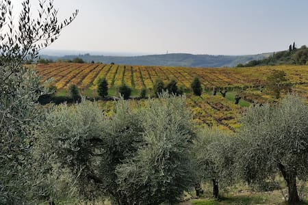 AGRITURISMO CORTE DEL MOSTO RELAIS - San Pietro - Bed & Breakfast