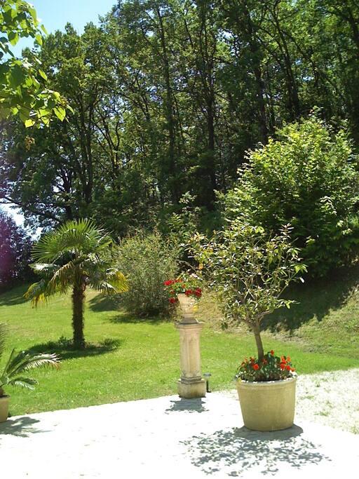 vue sur colline,palmiers, pins parasols, cyprès, oliviers
