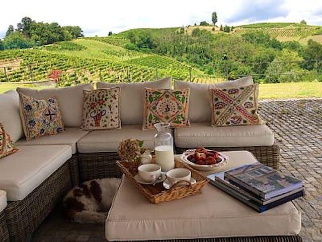 Splendida casa colonica Monferrato - Castel Rocchero - Willa