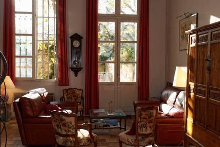 Superbe Duplex, Jardin, Coeur d Aix - Aix-en-Provence - Loft