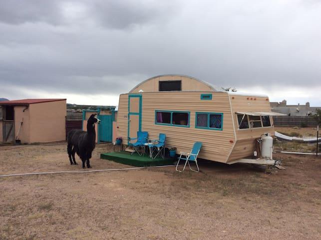 Cozy Gypsy Caravan with Llamas and Beautiful Views
