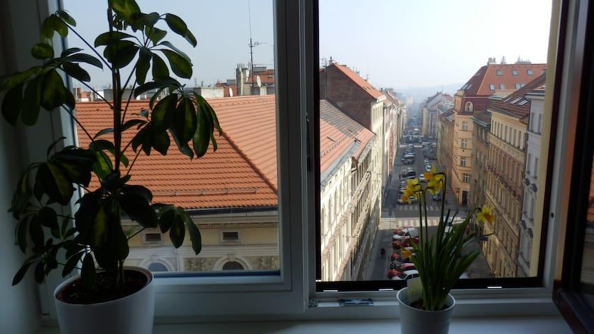 Attic flat, city centre, WIFI - Prága - Lakás