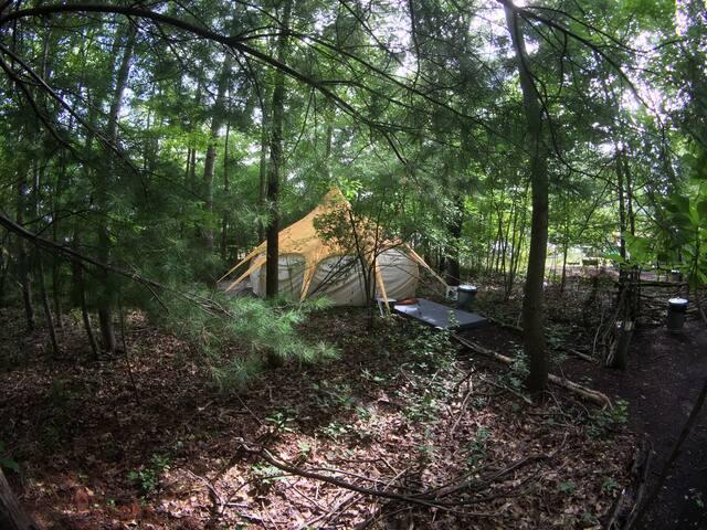 The Eco Camp - Big Lotus 4 - Dog Friendly Tent