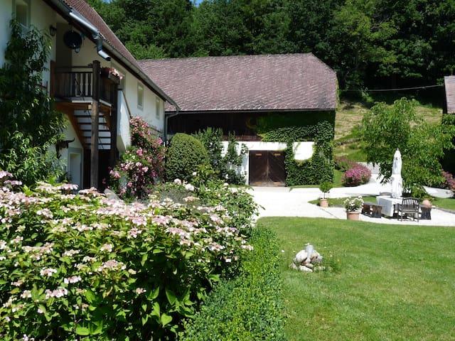 Geheimtipp auf schönem Gutshof - Sittersdorf - Casa