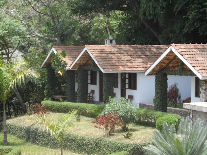 Amazing cottage in a lush garden
