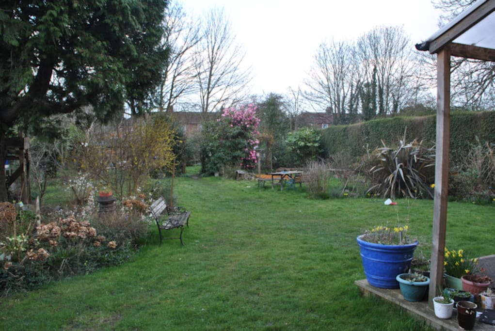 The beautiful tranquil garden
