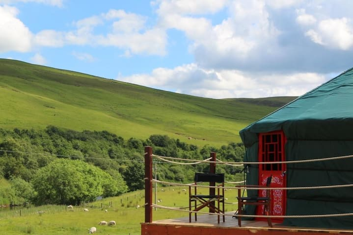 Ettrick Valley Yurts Glamping  - Selkirk